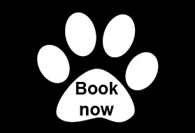 Booking form for The Cattery