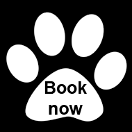 Book now at The Cattery
